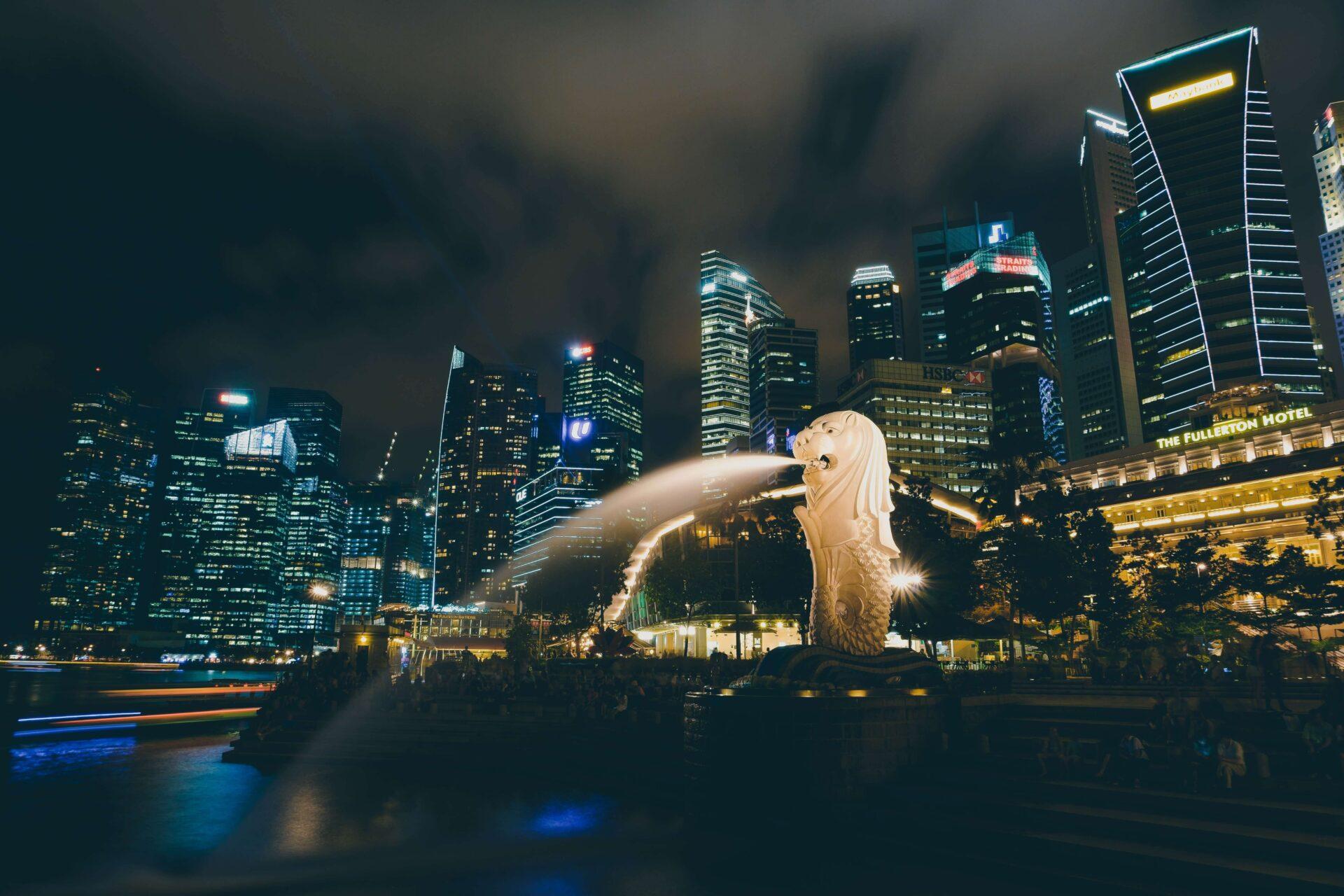 ANAマイルでシンガポール航空の予約をする方法!使用機材や注意点もご紹介